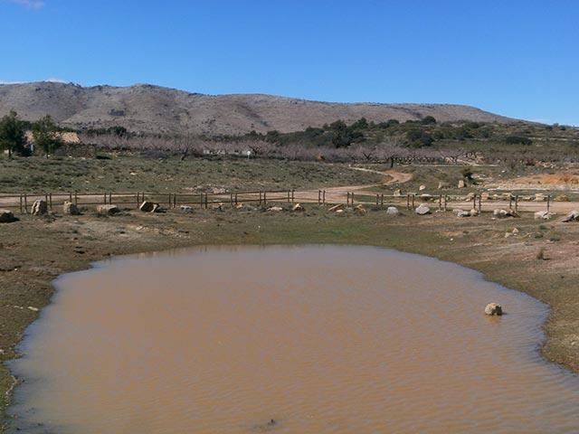 Tratamiento del agua en balsas agrícolas